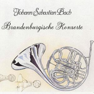 Johann Sebastian Bach: Brandenburgische Konzerte 歌手頭像
