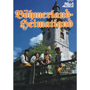 Die lustigen Böhmerwaldmusikanten 歌手頭像
