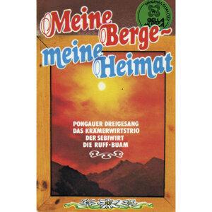 Meine Berge - Meine Heimat 歌手頭像
