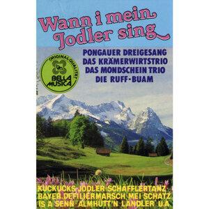 Wann i mein Jodler sing アーティスト写真