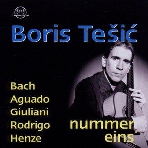 Boris Tesic 歌手頭像