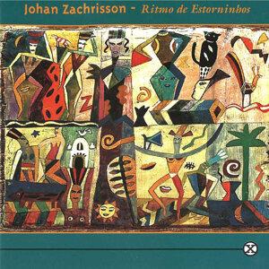 Johan Zachrisson 歌手頭像