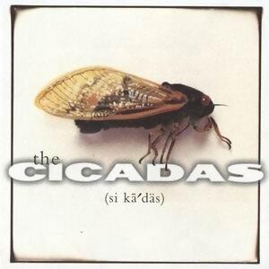 The Cicadas 歌手頭像