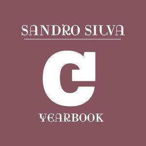 Sandro Silva 歌手頭像