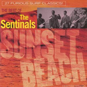 The Sentinals 歌手頭像