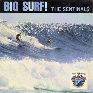 The Sentinals