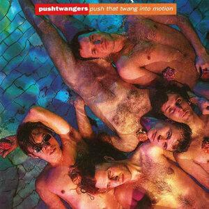 Pushtwangers 歌手頭像