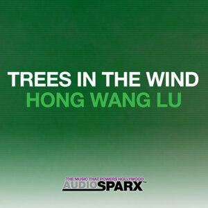 Hong Wang Lu 歌手頭像