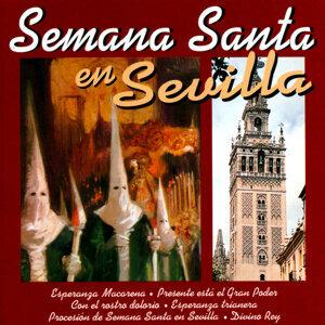 Semana Santa en Sevilla 歌手頭像