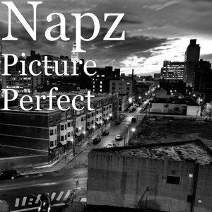 Napz 歌手頭像