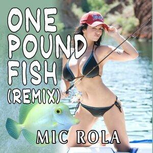 Mic Rola 歌手頭像