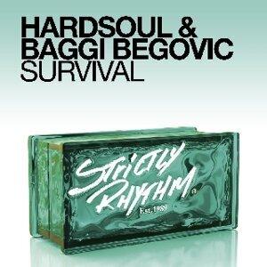 Hardsoul & Baggi Begovic 歌手頭像
