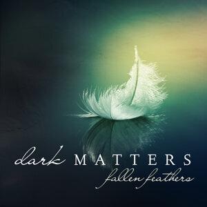 Dark Matters (黑暗物質) 歌手頭像