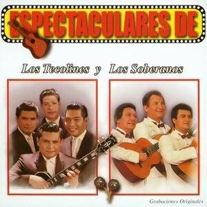 Espectaculares de Los Tecolines y Los Soberanos 歌手頭像