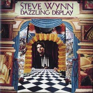 Steve Wynn 歌手頭像