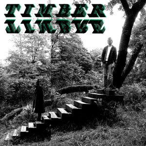 Timber Timbre (木質音 樂團) 歌手頭像