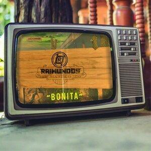 Raimundos 歌手頭像