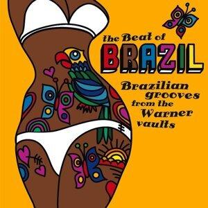 THE BEAT OF BRAZIL アーティスト写真