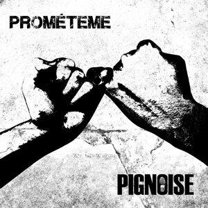Pignoise 歌手頭像