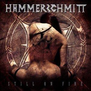 Hammerschmitt 歌手頭像