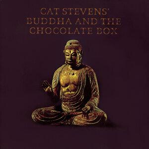 Cat Stevens (凱特史帝文斯)