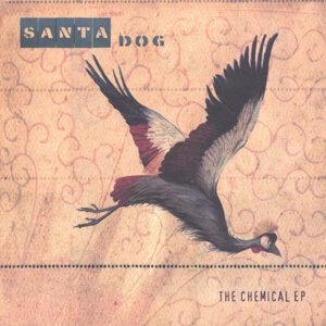 Santa Dog 歌手頭像