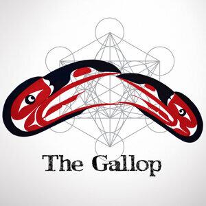 The Gallop 歌手頭像