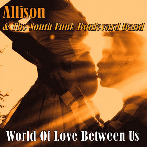 Allison & The South Funk Boulevard Band 歌手頭像