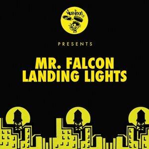Mr. Falcon 歌手頭像