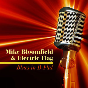 Mike Bloomfield & Electric Flag 歌手頭像