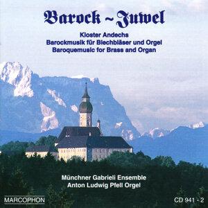Münchner Gabrieli Ensemble 歌手頭像