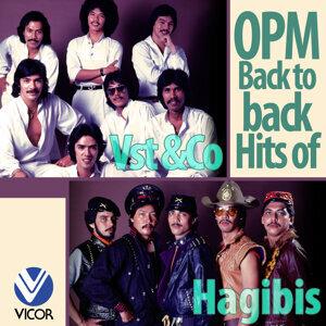 VST & Company, Hagibis 歌手頭像
