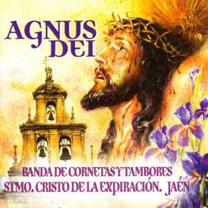 Banda de Cornetas y Tambores Stmo. Cristo de la Expiración, Jaén 歌手頭像