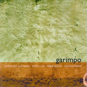 Garimpo 歌手頭像