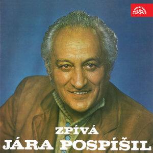 Jára Pospíšil 歌手頭像