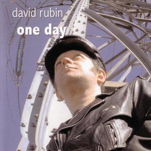 Rubin, David 歌手頭像
