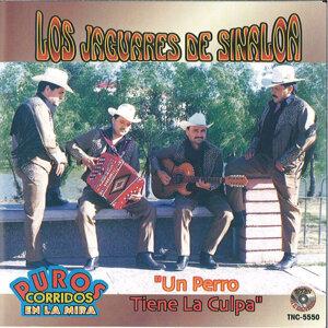 Los Jaguares De Sinaloa 歌手頭像
