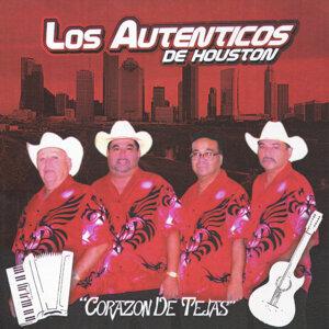 Los Autenticos de Houston 歌手頭像