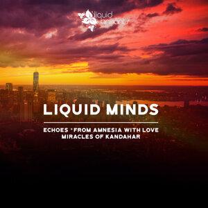 Liquid Minds 歌手頭像