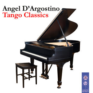 Angel D'Argostino 歌手頭像