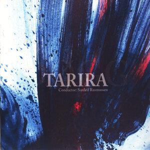 Tarira 歌手頭像
