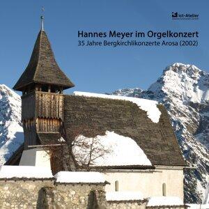 Hannes Meyer 歌手頭像