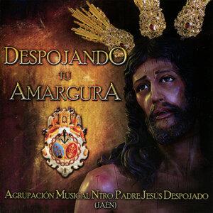 Agrupacion Musical Nuestro Padre Jesús Despojado de Jaen 歌手頭像
