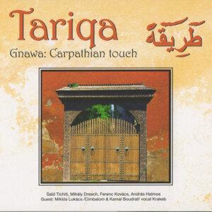 Tariqa 歌手頭像