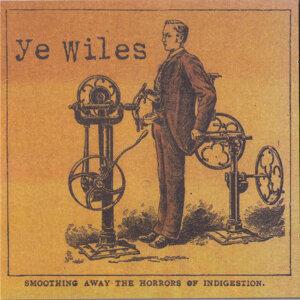 Ye Wiles 歌手頭像