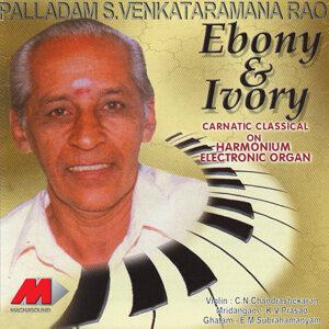 Palladam S Venkataramana Rao 歌手頭像