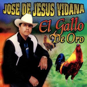 Jose de Jesus Vidana 歌手頭像