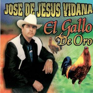 Jose de Jesus Vidana