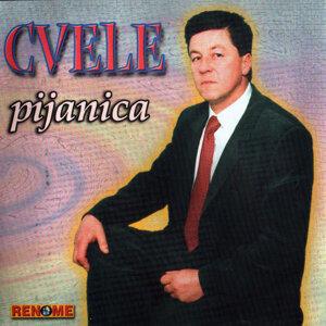 Cvele 歌手頭像