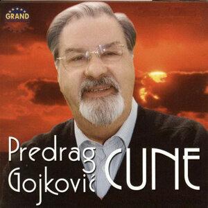 Predrag Cune Gojkovic 歌手頭像